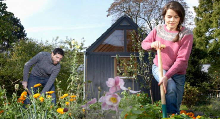 Фото к статье: Фитнес для огородников от Татьяны Лисицкой