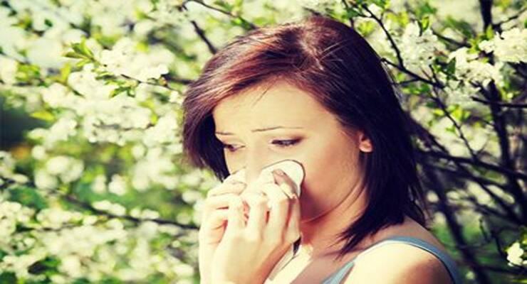 Фото к статье: Сезонная аллергия: лечите без таблеток