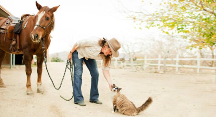 Фото к статье: Татьяна Лисицкая о пользе общения с животными