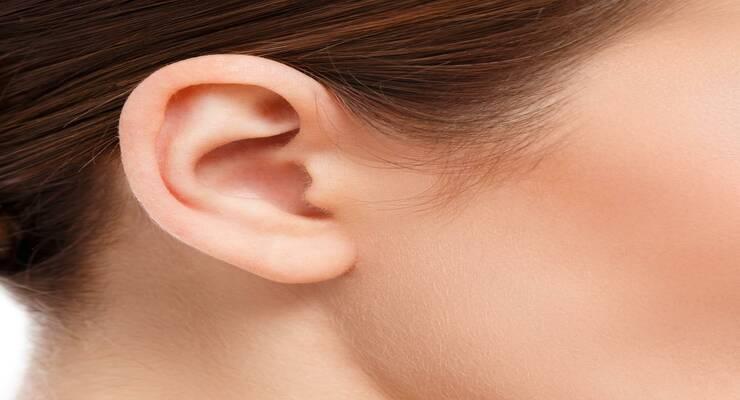 Фото к статье: Как сохранить здоровье ушей: 7 главных правил
