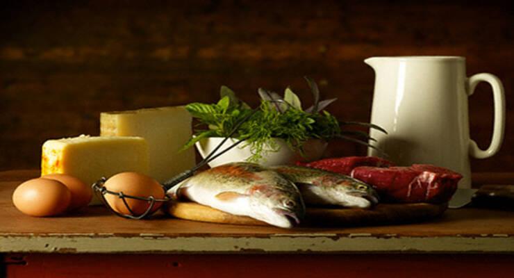 Фото к статье: Белковые продукты: инструкция по применению