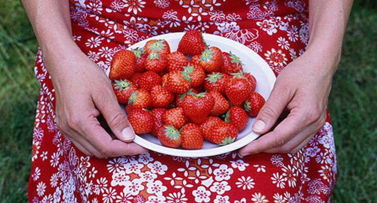 Фото к статье: Светлана Литвинова делится рецептами блюд из клубники