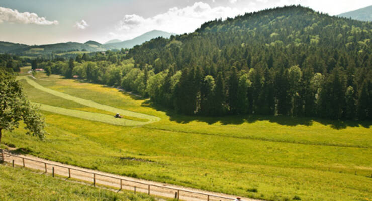 Фото к статье: Оксисайз в Баварии с Мариной Корпан