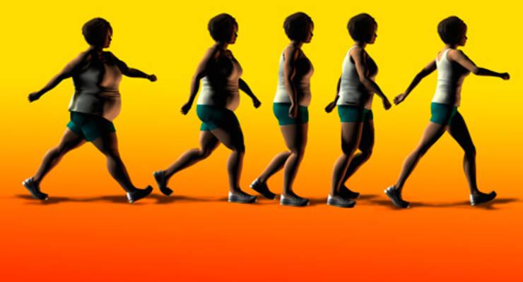 Фото к статье: Правда о лишнем весе, похудении и обмене веществ