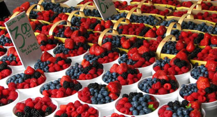 Фото к статье: Тонкости ягодного выбора