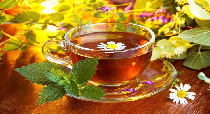 Фото к статье: Травяной чай для красивой кожи и здоровых волос