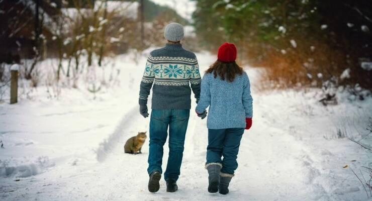 Фото к статье: Что будет, если гулять каждый день (согласно исследованиям)