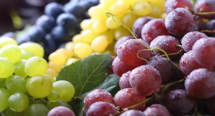 Фото к статье: Виноград: польза и вред