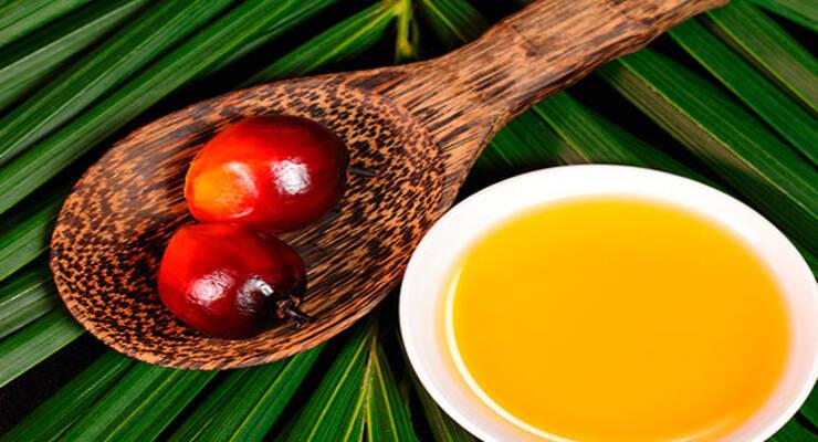 Фото к статье: Пальмовое масло: вред и польза