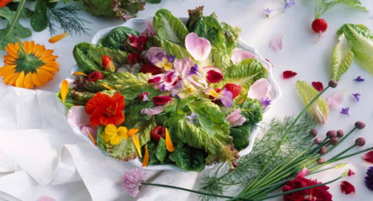Фото к статье: Салат из анютиных глазок и еще 4 рецепта из цветов
