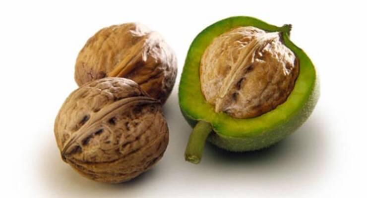 Фото к статье: Орехи против холестерина