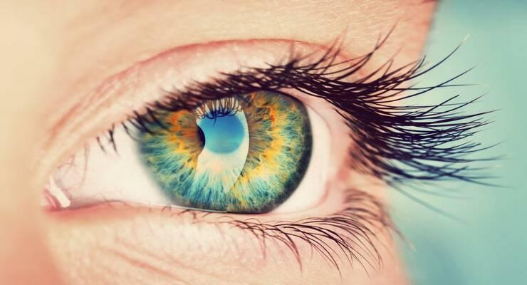 Фото к статье: Цвет глаз: 5 интересных фактов