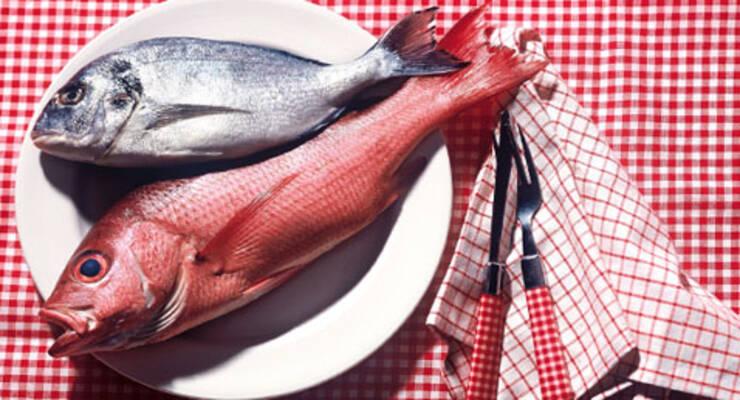 Фото к статье: Рыбий жир и свиное сало вместо «Прозака»