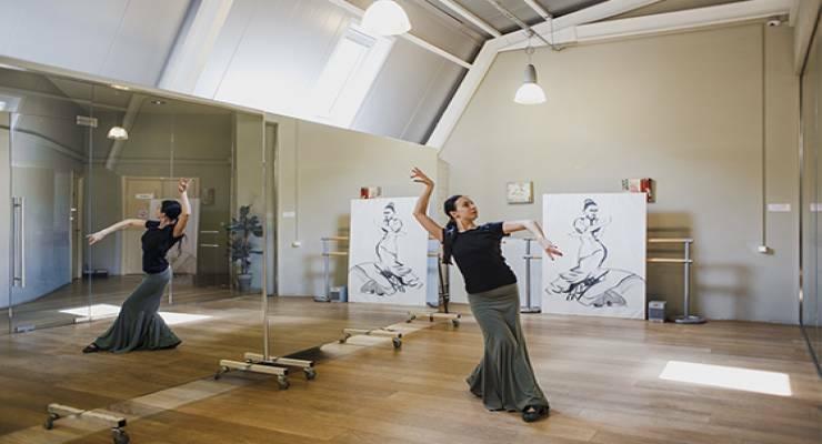 Фото к статье: Страсть и стройность: базовые движения фламенко (видео)