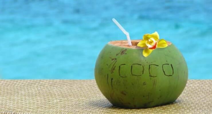 Фото к статье: В Москву завезли зеленые кокосы