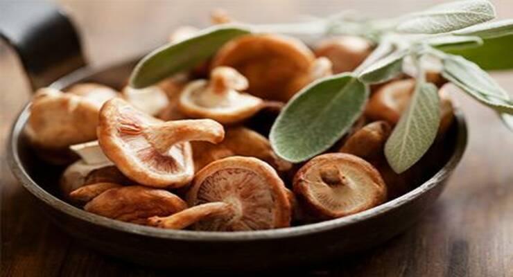 Фото к статье: Как сочетать грибы и мясо: рецепты