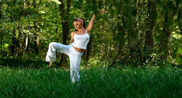 Фото к статье: Фестиваль йоги и ведической культуры 7-9 августа в Москве