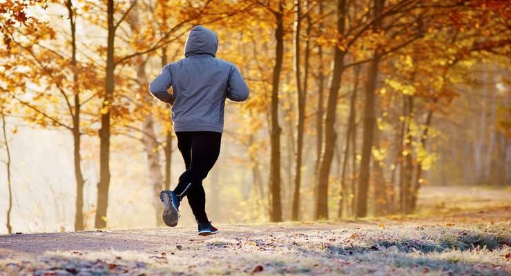 Фото к статье: Как продолжить тренировки по бегу в холодную погоду