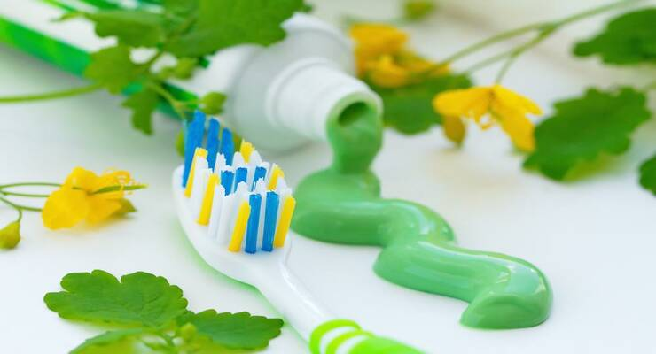 Фото к статье: Лечебные травы для крепких зубов, здоровых десен и свежего дыхания