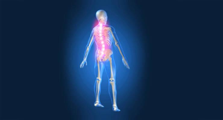 Фото к статье: Йога для позвоночника: йога против остеохондроза (ФОТО)
