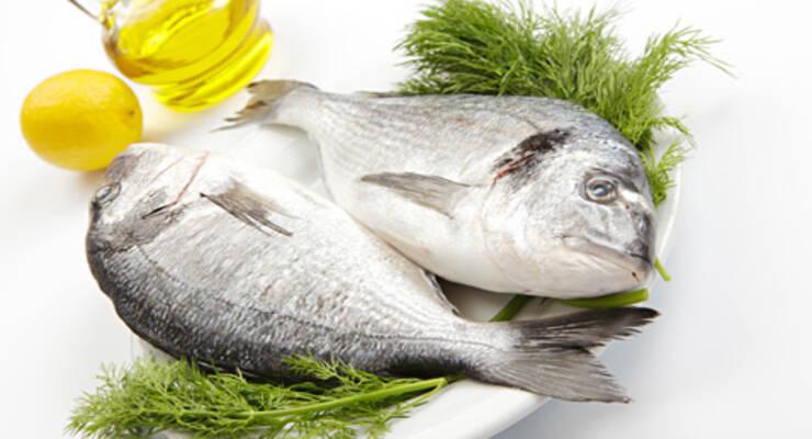 Фото к статье: «Хорошая еда». Дорада и горошек: рыба в соли, суп и карпаччо