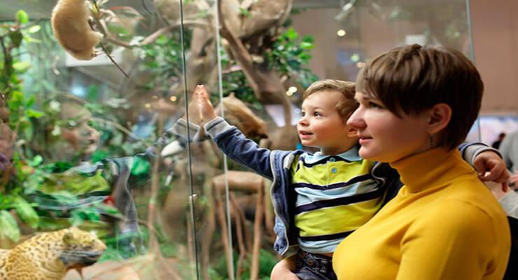 Фото к статье: Вместе с ребенком в музей, театр, цирк – организуйте культпоход правильно
