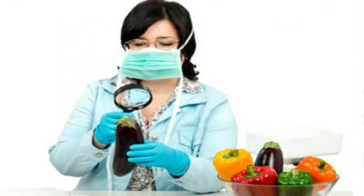 Фото к статье: Самые экологически чистые и грязные фрукты и овощи