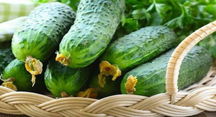 Фото к статье: Не только салаты: оригинальные блюда из огурцов