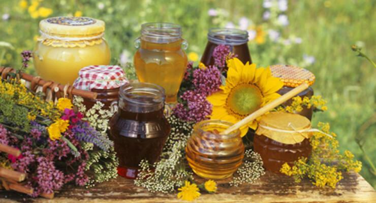 Фото к статье: Как выбирать мед