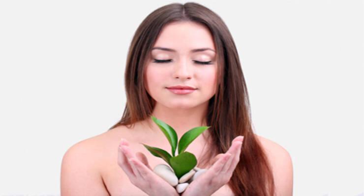 Фото к статье: Фитотерапия для фитнеса: напитки с полезными травами