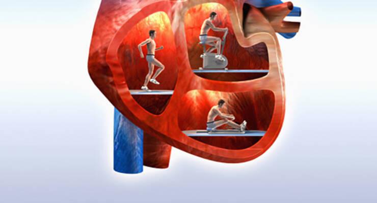Фото к статье: Какой кардиотренажер выбрать