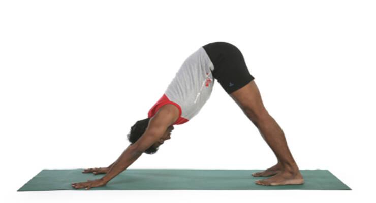 Фото к статье: Женская йога с Рави Кумаром Довлуру: третий период цикла, третий вариант