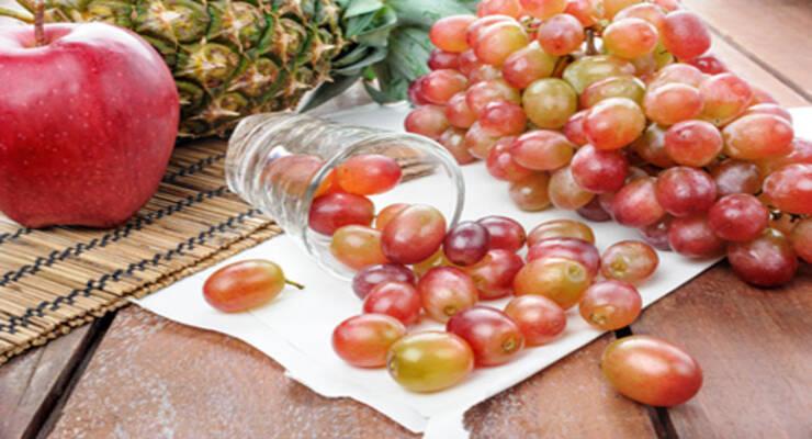 Фото к статье: Детокс-уикенд по-французски: на винограде