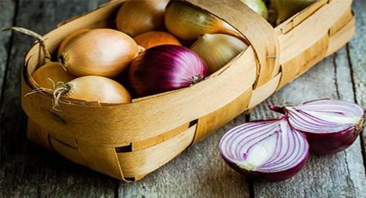 Фото к статье: Блюда из лука: рецепты от шеф-поваров. Часть 2