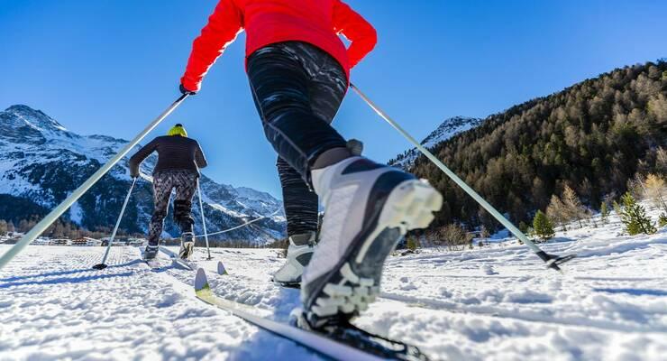 Фото к статье: Как выбрать лыжи