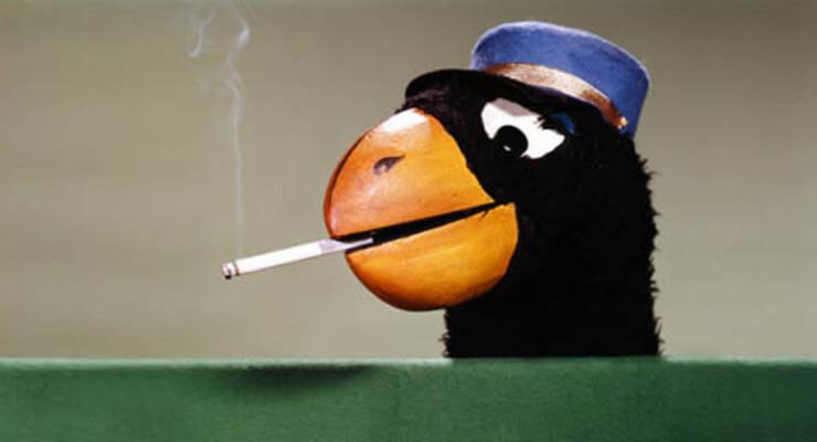 Фото к статье: Доказано: от курения глупеешь