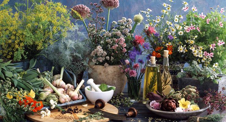 Фото к статье: Цветочная терапия