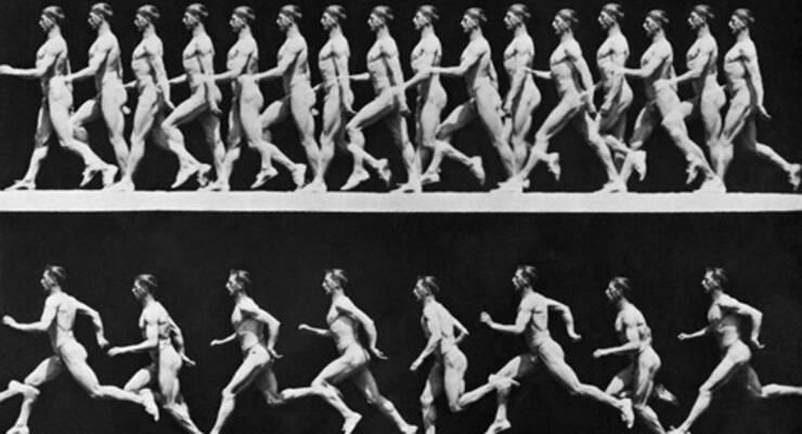 Фото к статье: Бег или ходьба?