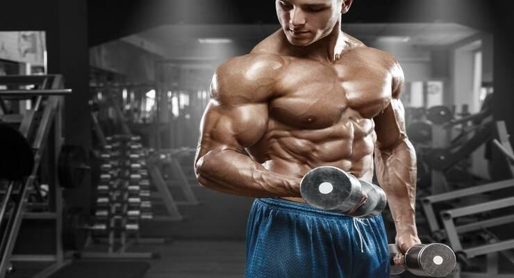 Фото к статье: Чем больше мышц, тем здоровее сердце
