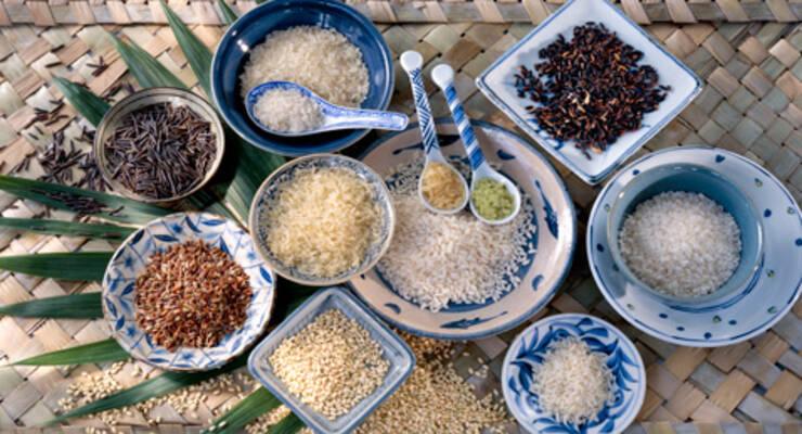 Фото к статье: Как выбрать самый полезный рис?