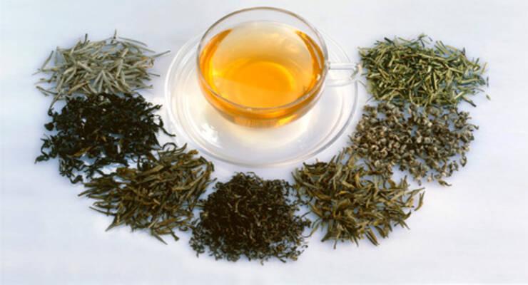 Фото к статье: Все, что нужно знать о чае: полезные свойства качественного чая