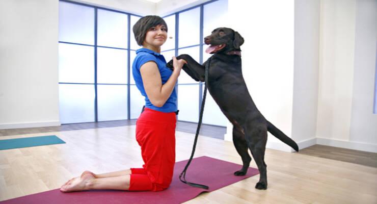 Фото к статье: «Дога-йога»