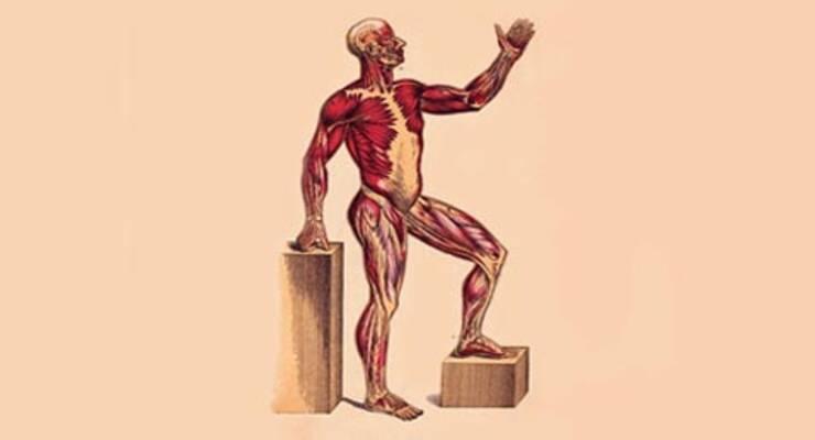 Фото к статье: Пилатес против жира. Начинает и выигрывает