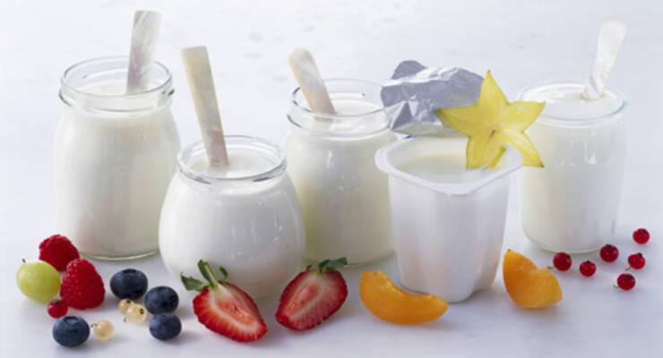 Фото к статье: Рейтинг «ЖИВИ!»: натуральные йогурты