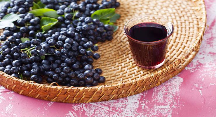 Фото к статье: Чем полезна черноплодная рябина